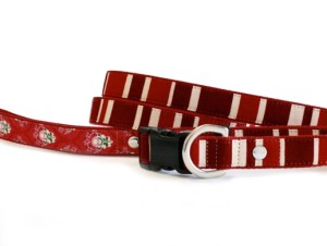 Red collar for Jaby