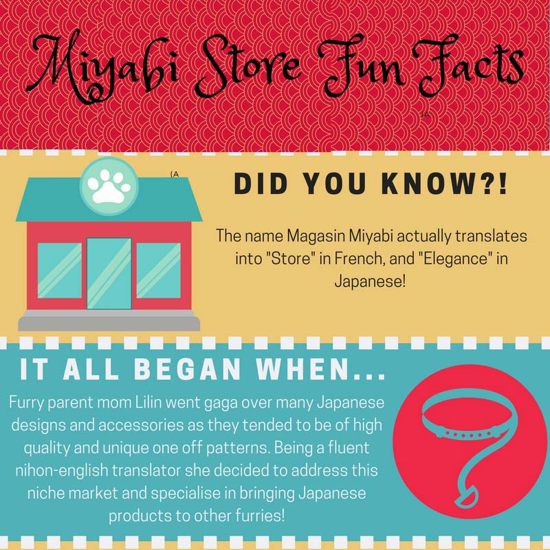 Miyabi Fun Facts – Get To Know Us!